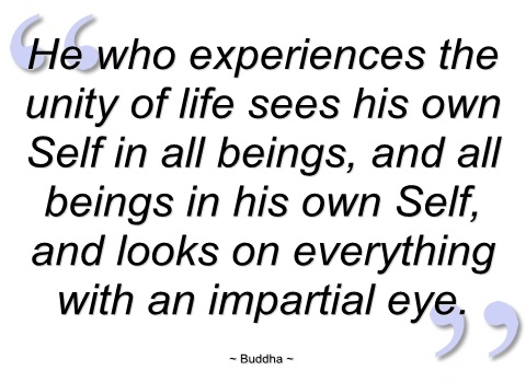 he-who-experiences-the-unity-of-life-sees-buddha