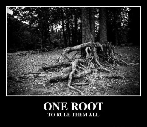 one-root-to-rule-them-all-fa41dc-e1341482332407